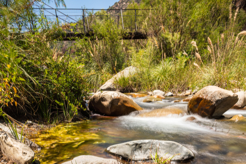 Reserva Natural Río Clarillo